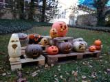 Fotogalerie Halloween Brunch, foto č. 2